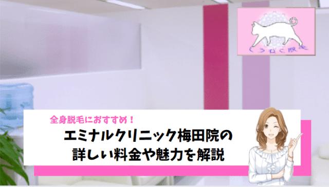 医療 脱毛 梅田 効果 高い エミ ナル クリニック