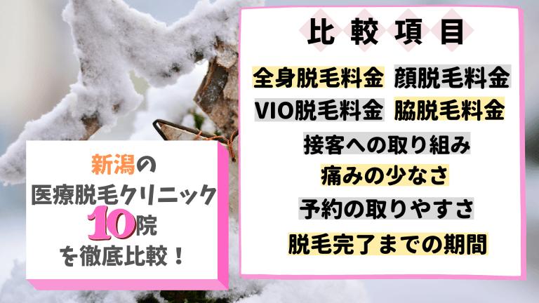 新潟の医療脱毛クリニック10院を徹底比較!