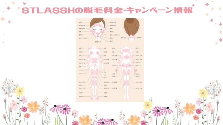 STLASSH脱毛料金&キャンペーン情報