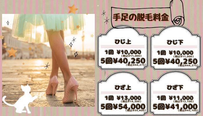 リアラクリニック手足-税抜・税込表示料金新宿