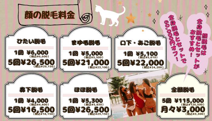 リアラクリニック顔-税抜・税込表示料金新宿